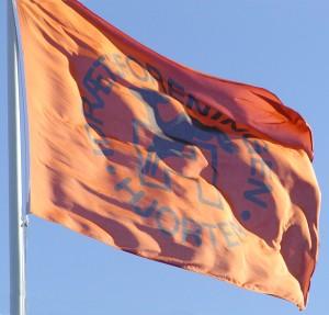 Hjortenflag_i_vinden fodbold