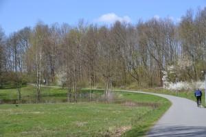 Skinderskoven (3)